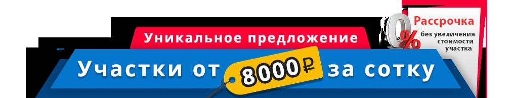 8000 руб. за сотку